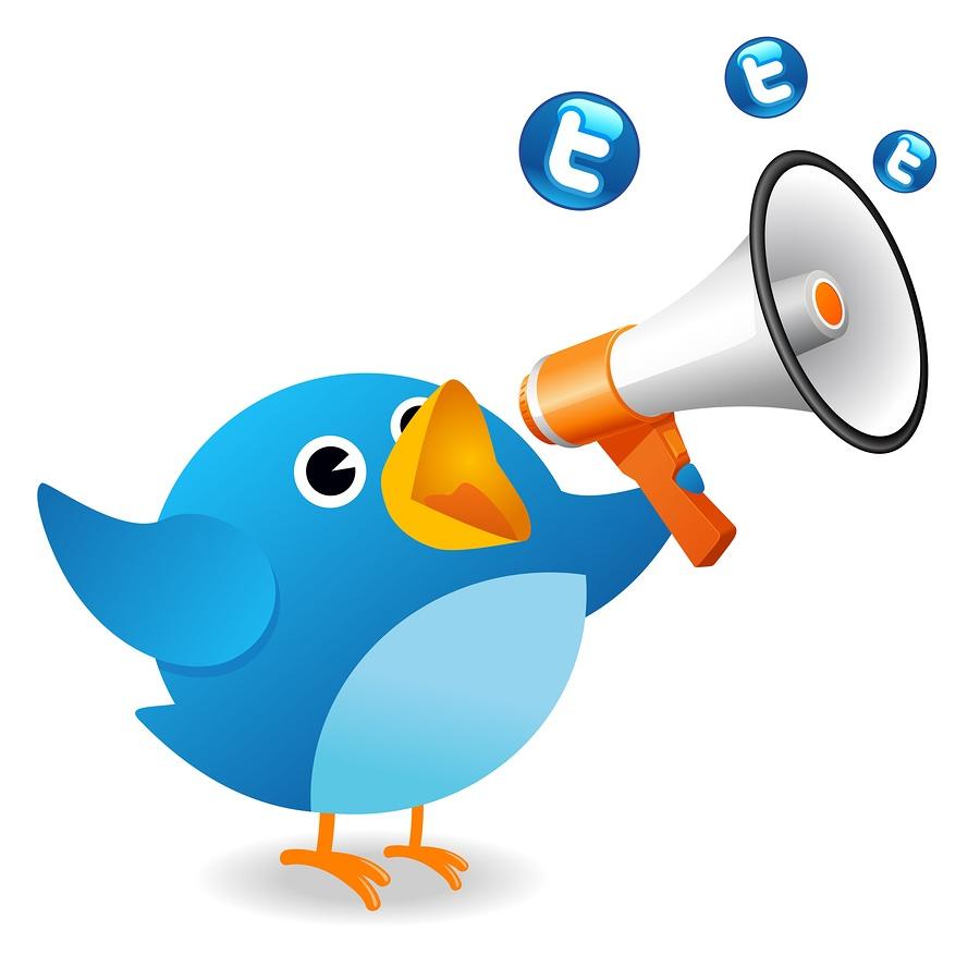 http://samedaytranslations.com/wp-content/uploads/2012/03/twitter21.jpg
